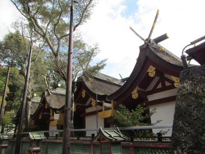 Kasuga_taisha_kasuga_grand_shrine_n